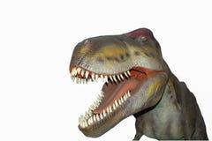 En läskig isolerad rex för dino dinosaurier T Royaltyfria Foton