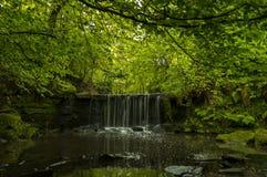 En lång exponering av en liten vattenfall i en avskild dalgång med frodiga täckte gräsplaner och mossa vaggar royaltyfria foton