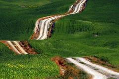 En lång och för spolning lantlig bana korsar de gröna kullarna, Tuscany, Italien royaltyfri bild