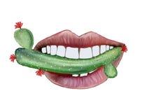 En lång ramsa av kaktuns Royaltyfria Bilder