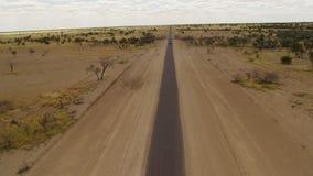 En lång väg med träd och grässkottet arkivfilmer