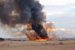En löpeld i Colorado producerar en putsa av rök Royaltyfria Bilder