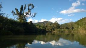 En lös flod i bergen Arkivbilder