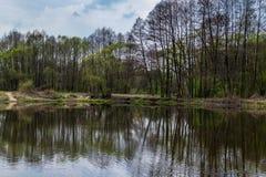 En lös flod i centrala Polen, Wartaen och det Widawka landskapet parkerar Arkivbild