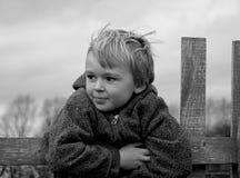 En la cerca Foto de archivo libre de regalías