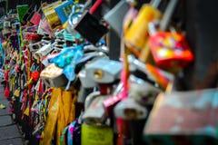 En la cerca de las cañas Fotografia Stock Libera da Diritti