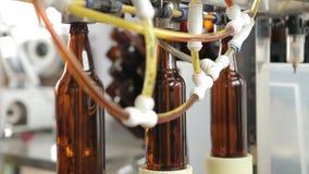 En la cervecería, la máquina substituye las botellas debajo de la boca para llenarlas de la cerveza almacen de metraje de vídeo