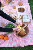 En la comida campestre Imagen de archivo libre de regalías