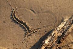 En la costa Foto de archivo libre de regalías