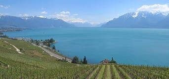 En la dirección del montaje Pelerin, lago Leman Imagenes de archivo