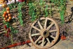 En la exposición Seto, rueda, flores salvajes Imagen de archivo