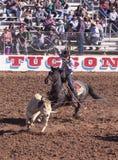En La Fiesta De Los Vaqueros, Tucson, Arizona Arkivbild