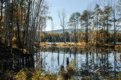 En la isla de StFaith en Urales meridionales Imagen de archivo