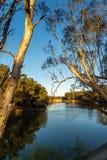 En la madrugada de Murray River Imágenes de archivo libres de regalías