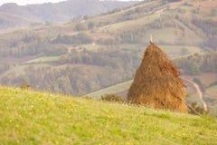En la manera a través del campo precioso de Transilvania Fotos de archivo libres de regalías