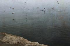 En la opinión del mar Imagen de archivo libre de regalías