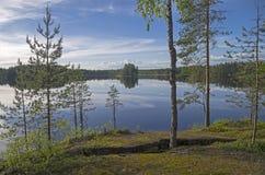 En la orilla del lago del bosque Fotografía de archivo libre de regalías