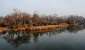 En la orilla del río en otoño imagenes de archivo