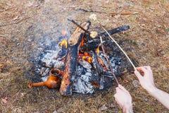 En la participación en el bosque de la primavera, un pote del café turco de la arcilla se calienta contra la hierba En el marco imágenes de archivo libres de regalías