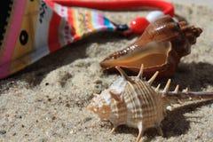 En la playa. Foto de archivo libre de regalías
