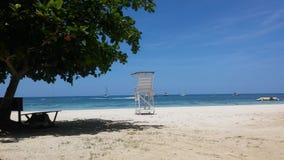 En la playa 库存照片
