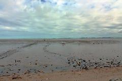En la playa con marea baja Fotos de archivo