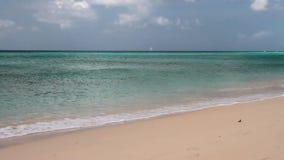 En la playa de Brandons Bridgetown, Barbados almacen de metraje de vídeo