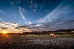 En la puesta del sol Imagenes de archivo