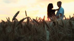 En la puesta del sol entre los campos de trigo es un par joven almacen de metraje de vídeo