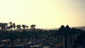 En la puesta del sol, la playa con los paraguas y las camas vacías del sol, contra el contexto de palmeras Tarde del verano almacen de metraje de vídeo