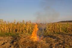 En la puesta del sol quema en el campo Foto de archivo libre de regalías