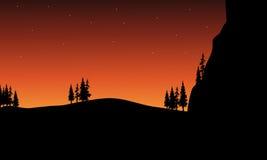 En la silueta de la noche del árbol Imágenes de archivo libres de regalías