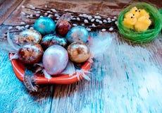 En la tabla de madera vieja es una placa de los huevos de Pascua coloreados de codornices y del pollo con los cordones coloreados Fotos de archivo libres de regalías