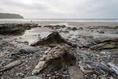 En la trayectoria Cornualles Inglaterra Reino Unido de la costa Imágenes de archivo libres de regalías