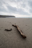 En la trayectoria Cornualles Inglaterra Reino Unido de la costa Fotografía de archivo