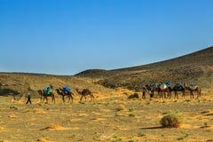 En laden kamelhusvagn i Sahara fotografering för bildbyråer