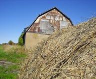 En ladugård för gammalt land Arkivfoto