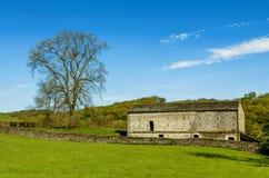 En ladugård och en fastställd på engelska bygd för träd med ett grönt fält i förgrunden och ett trä bortom Royaltyfri Bild