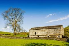 En ladugård och en fastställd på engelska bygd för träd med ett grönt fält i förgrunden under en blå himmel Royaltyfria Foton