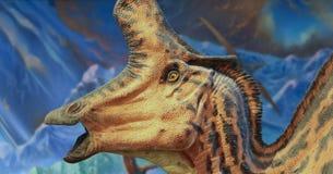 En Lambeosaurus utställning på det Nat, San Diego, CA, USA royaltyfri bild