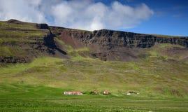 En lantgård i Island på foten av en bergskedja arkivbilder