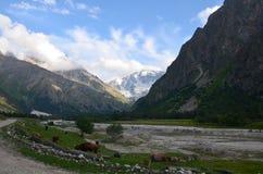 En las colinas del monte Elbrus fotografía de archivo