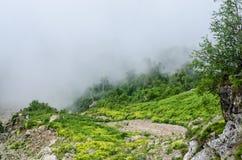 En las montañas sobre las nubes Foto de archivo libre de regalías