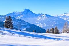 En las montañas suizas Foto de archivo libre de regalías