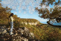 En las monta?as, en el bosque, en un d?a soleado brillante foto de archivo libre de regalías
