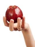 En las mujeres 's da la manzana roja Imagen de archivo libre de regalías