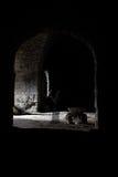 En las sombras Fotos de archivo