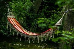 En lat hängmatta i skogen Royaltyfri Fotografi