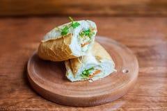 En läcker vietnamesBahn Mi smörgås Arkivbild