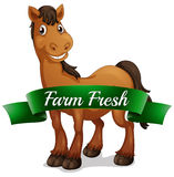 En le häst med en ny etikett för lantgård Arkivfoto